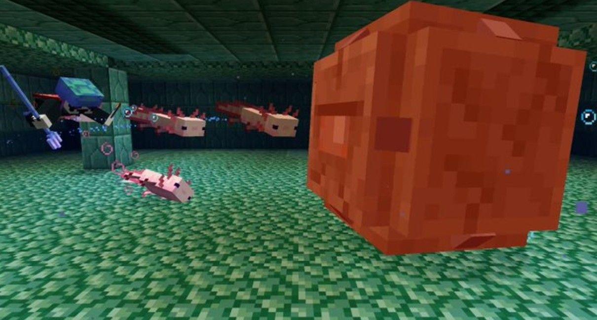 axolotl-attaque