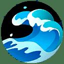 Cramorant-Surf