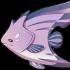 poisson-papillon-violet