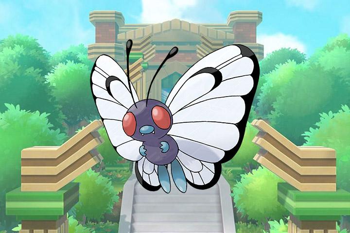 La félicité [PV : Munec] Pokemon-lets-go-012-papilusion
