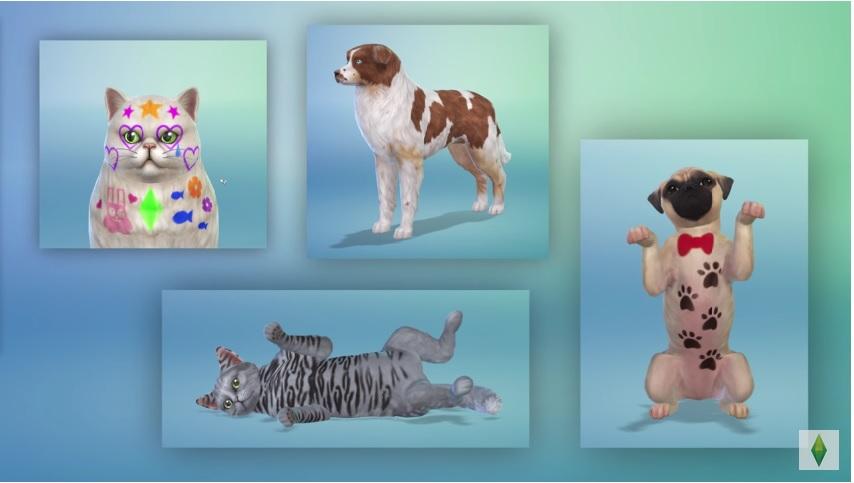 Sims 4 : Chiens et Chats - Créer un animal et le