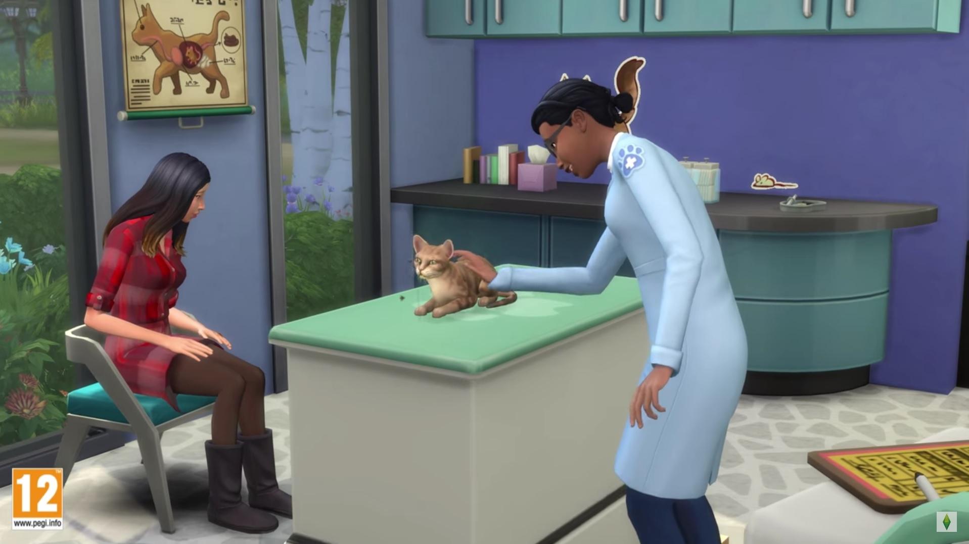sims 4 chiens et chats devenir v t rinaire et g rer sa clinique breakflip actualit. Black Bedroom Furniture Sets. Home Design Ideas