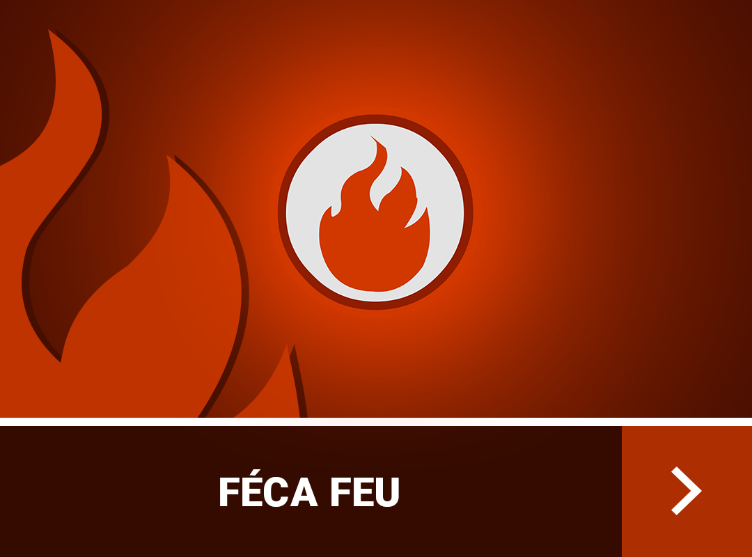 guide-de-stuff-feca-dofus